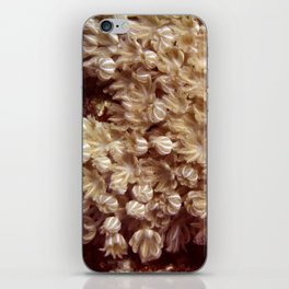 Xenia Coral Pulsing iPhone Skin