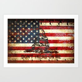 American Flag And Gadsden Flag Composition Art Print