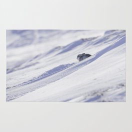 Mountain hare on snow slope Rug