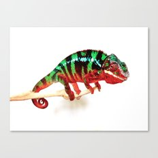 Colorful Dragon Canvas Print