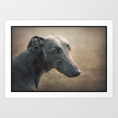 The Sighthound Art Print