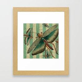 5 Grasshoppers Framed Art Print
