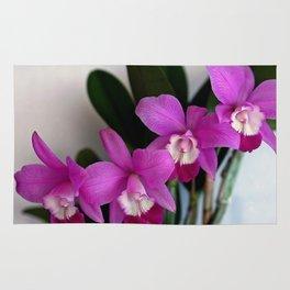 Laeliocattleya Orchid Rug