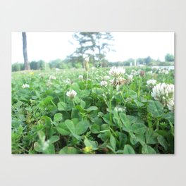 More Wildflowers & Grass Canvas Print