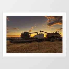 Golden Hour Grain Art Print