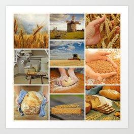 Flour & Wheat Art Print