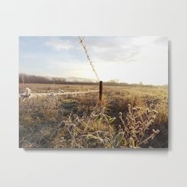 cold frozen Metal Print