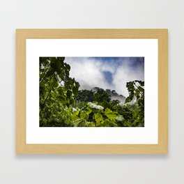 View through the Mist of the Cloud Forest in the Chocoyero-El Brujo Nature Reserve, Nicaragua Framed Art Print