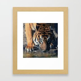 Hunger Framed Art Print