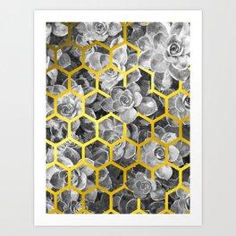 Black and White Succulent Geometric Art Print