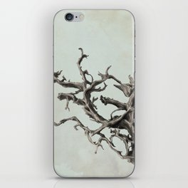 Spirits of the Driftwood iPhone Skin