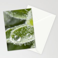 Morning Dew II Stationery Cards