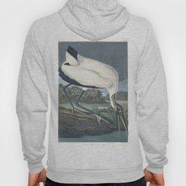 Wood ibis edit, Birds of America, Audubon Plate 216 Hoody