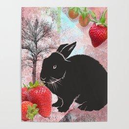 Black Rabbit and Strawberries Poster