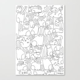puzzle bunnies Canvas Print