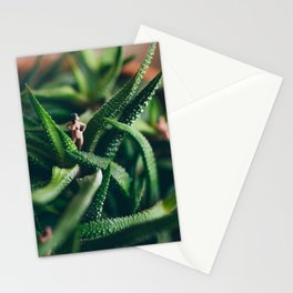Wild Woman Stationery Cards