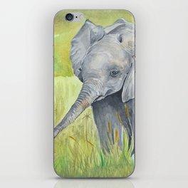 Baby Elephant  with birds iPhone Skin