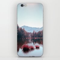buddhism iPhone & iPod Skins featuring Winter Lake by Schwebewesen • Romina Lutz