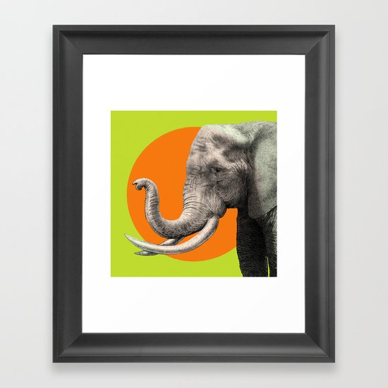 Wild 6 by Eric Fan & Garima Dhawan Framed Art Print