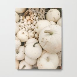 Modern Autumn : White Pumpkins Metal Print