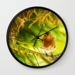 Curious Robin Wall Clock
