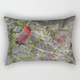 His Majesty the Cardinal Rectangular Pillow