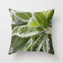Morning Dew II Throw Pillow