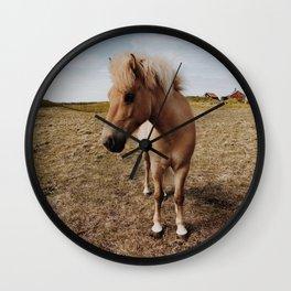 Icelandic Horse #1 Wall Clock