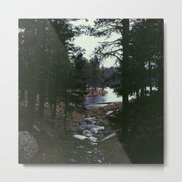 Woods Canyon Lake Metal Print
