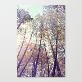 Aboveness  Canvas Print