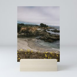 Sea Ranch Beach Seals Printable Wall Art | California Nature Ocean Coastal Travel Wildlife Photography Print Mini Art Print