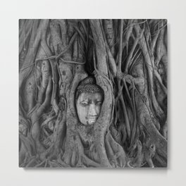 its complicated - vine buddha Metal Print