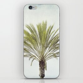 Palm Tree Photography, California Beach Coastal Art, Palm Trees Sky iPhone Skin