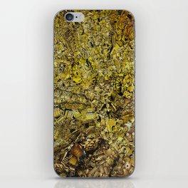 C3PO iPhone Skin