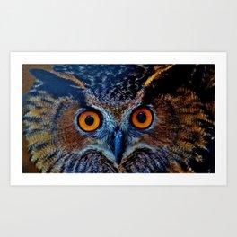 Orange Owl Eyes Art Print