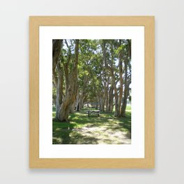 AMONGST THE TREES Framed Art Print