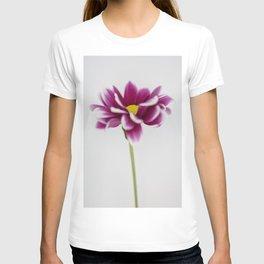 Chrysanth T-shirt