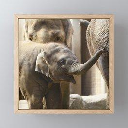 Happy Baby Elephant Framed Mini Art Print
