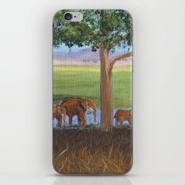 African Elephants iPhone Skin
