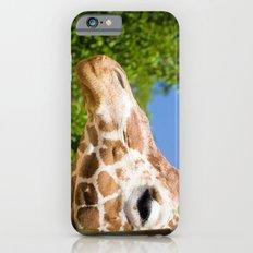 Profilin' iPhone 6s Slim Case