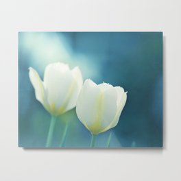 Aqua Blue Tulip Photography, Teal Turquoise White Flowers, Floral Nature Metal Print