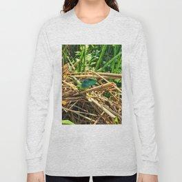 curious lizard Long Sleeve T-shirt