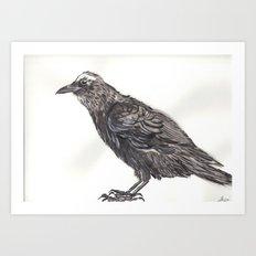 Watercolor Crow Art Print