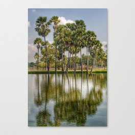 Reflection of palm trees in the water Canvas Print