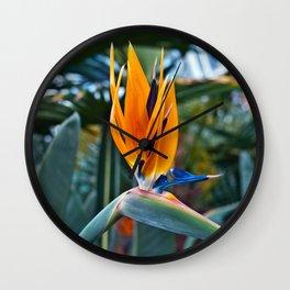 Magic Bird of Paradise Wall Clock