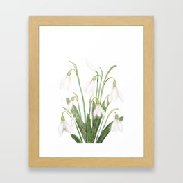 white snowdrop flower watercolor Framed Art Print