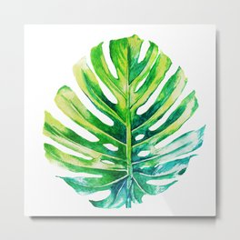 Monstera flower Metal Print
