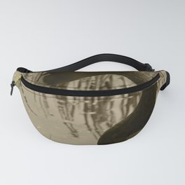 Black Swan 21 Tint Donegal Ireland Fanny Pack
