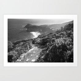 Path along cliffs of Cape Point, South Africa Art Print