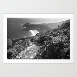 Path along cliffs of Cape Point, South Africa Art Print